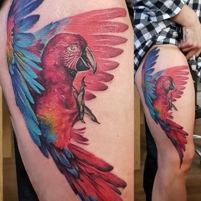 Today's work, parrot tattoo by #JustynaKurzelowska @darkrosetattoo